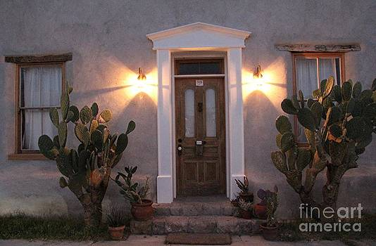 Tucson Doors at Dusk by Diane Greco-Lesser