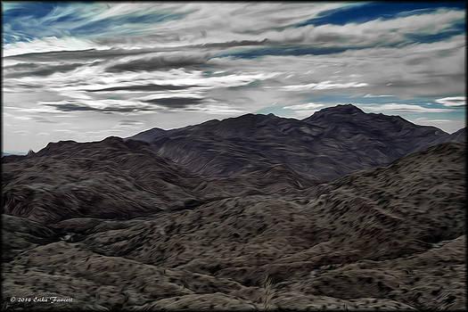 Erika Fawcett - Tucson Foothills
