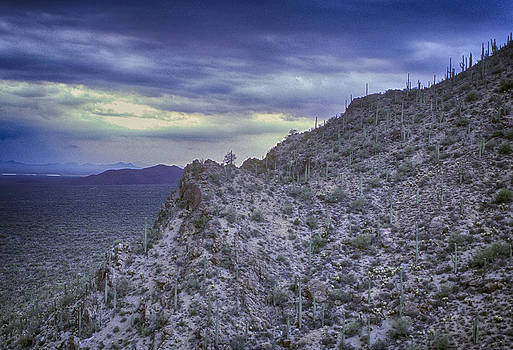 Tucson Mountains by Robert Schambach