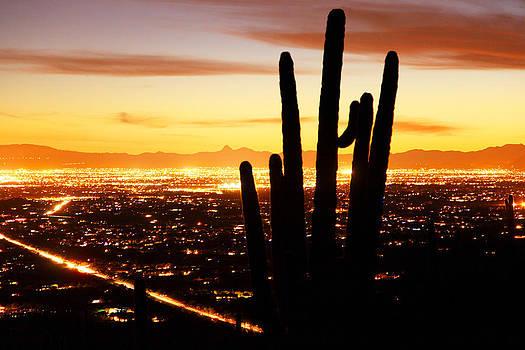 Susan Rovira - Tucson Sunset 2