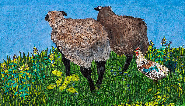 Tugen Follows Sheep by Sandee Johnson