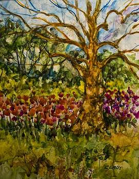 Tulip Garden Kingwood  by Mary Ann Clady