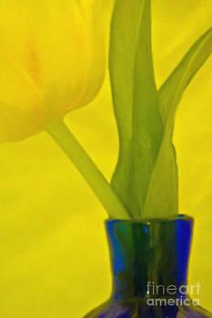 Kathleen K Parker - Tulip in Blue Vase