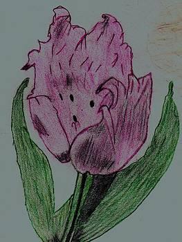 Tulip Natural Beauty by Shaunna Juuti