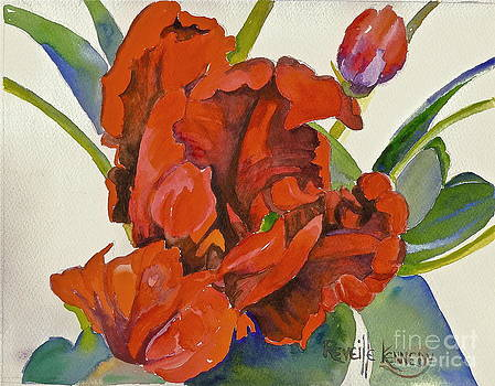 Tulip Red Hot Ruffled by Reveille Kennedy