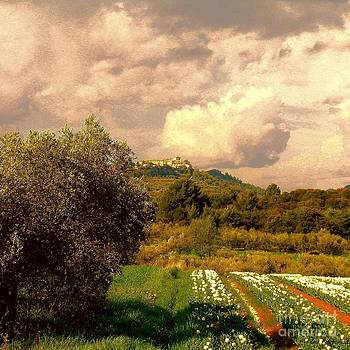 Tulips field and Lurs village in Provence France by Flow Fitzgerald