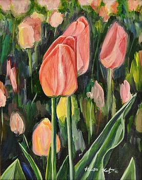 Tulips by Heather Kertzer