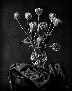 Endre balogh artwork collection black and white flowers endre balogh tulips in a vase black and white mightylinksfo