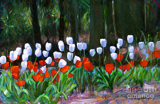 Candace Lovely - Tulips Near the Woods