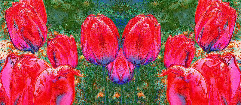 Tulips Pano by Anthony Vlach