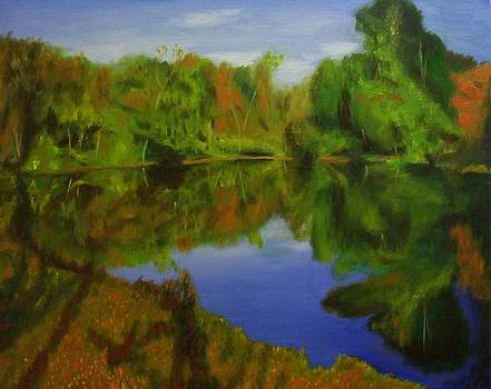 Tulpehocken Creek by Phillip Compton
