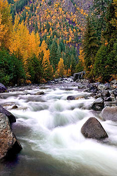 Tumwater Fall by David  Forster
