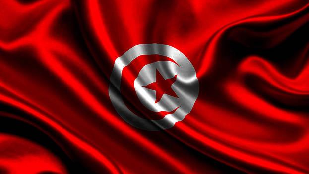Valdecy RL - Tunisia Flag