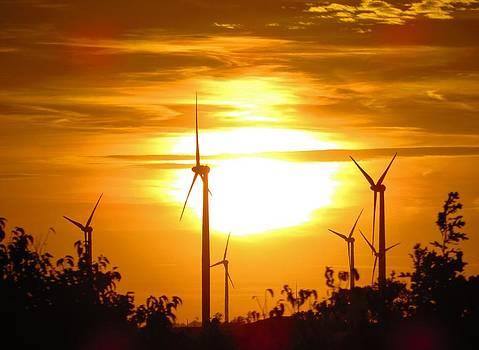 Turbine Sunset by Carli Tolmie