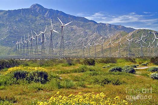 David Zanzinger - Turbine Wind Farm San Gorgonio Pass Palm Springs CA