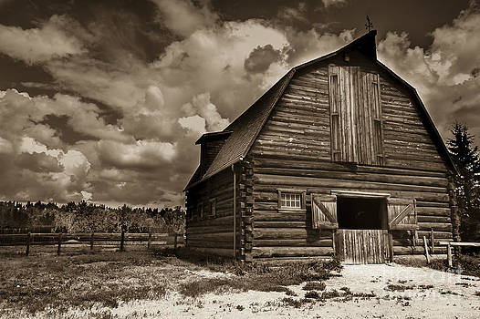 Darcy Michaelchuk - Turn of Century Barn Sepia