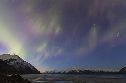 Tim Grams - Turnagain Arm Auroras