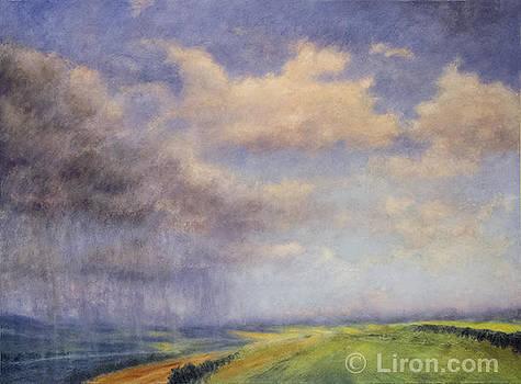 Turning Point by Liron Sissman