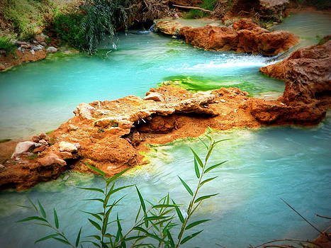 Turquoise Pools by Carrie Putz