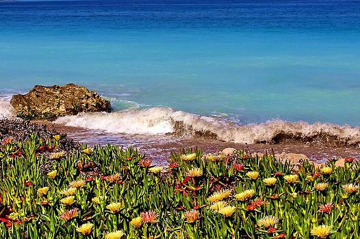 Julia Fine Art And Photography - Turquoise wild flowers and waves