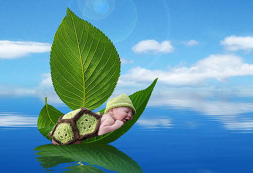 Turtle Baby in a Leaf Boat by Maureen E Ritter