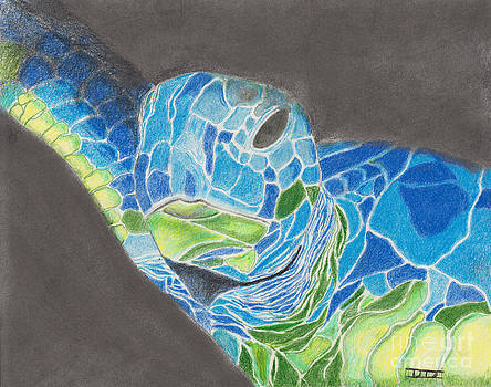 Turtle in Blue and Green by David Jackson
