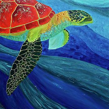 Turtle by Jill Kelsey