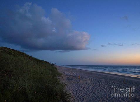 Turtle Mounds at Dawn by Virginia Zuelsdorf