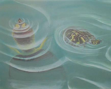 Turtle Pond I by Edward Maldonado