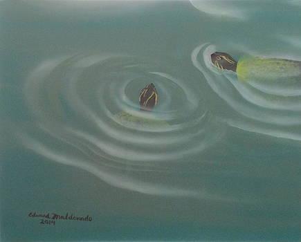 Turtle Pond III by Edward Maldonado