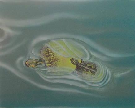 Turtle Pond IV by Edward Maldonado