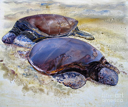 Turtle R and R by Louise Peardon
