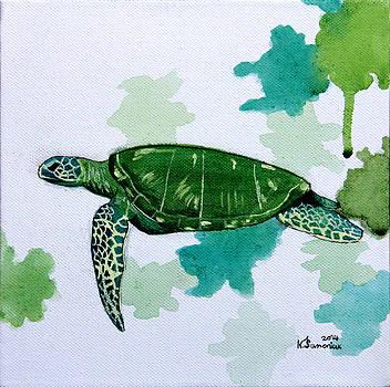 Turtle Study by Kayleigh Semeniuk