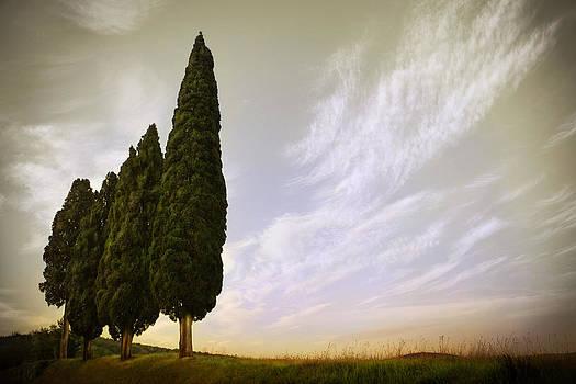 Tuscan Farmhouse Pienza 2071522-128-0177 by Jimmy Williams