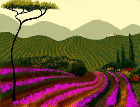 Tuscan Fields Of Color by Larry Cirigliano