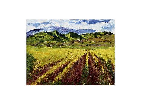Tuscan Vineyard by Maria Gibbs