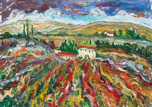 Tuscany 11 by Borislav Djukanovic