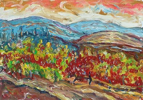 Tuscany 13 by Borislav Djukanovic