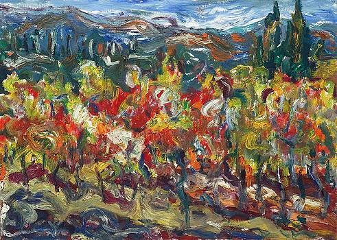 Tuscany 16 by Borislav Djukanovic