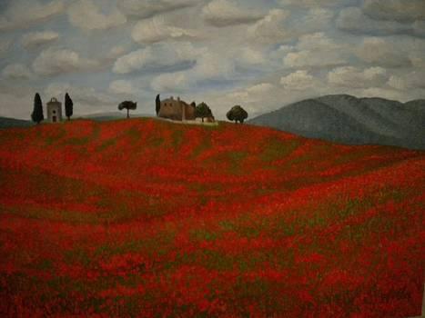 Tuscany by Abigail Avila