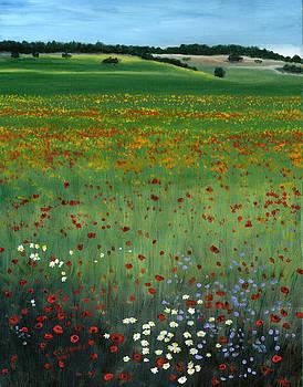 Tuscany Flower Field by Cecilia Brendel