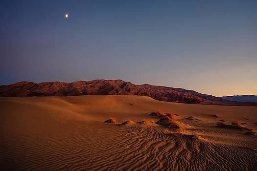 Gene Garnace - Twilight at the Dunes