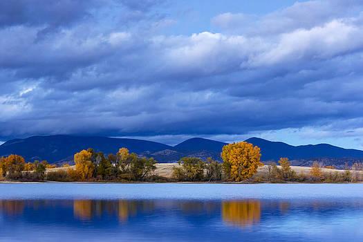 Twilight Beauty by Dana Moyer