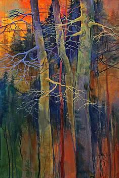 Twilight Dance by Carol  Nelson