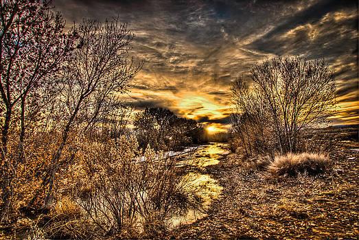 Twilight in the Bosque by Helene Kobelnyk