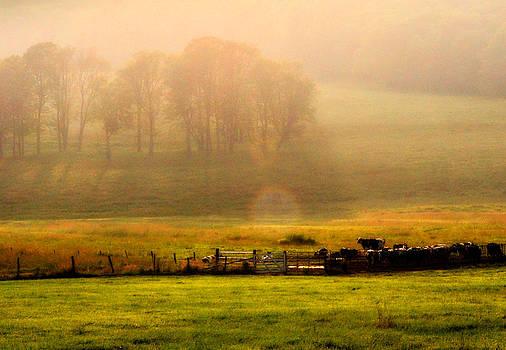 Mary Frances - Twilight On The Field