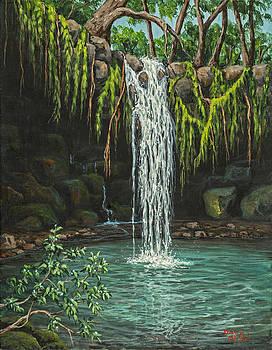 Darice Machel McGuire - Twin Falls