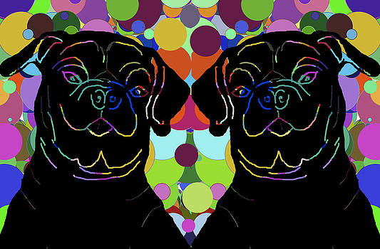 Twin Pugs 2 by Chris Goulette