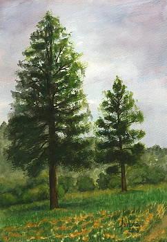 Twin Trees by Lorena Bishop