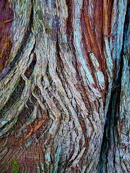 Hakon Soreide - Twisted Colourful Wood